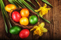 Easter eggs with spring flowers on dark wooden background sunlight effect