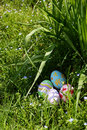 Easter eggs in spring grass Royalty Free Stock Photo