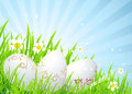 Easter eggs on the spring  meadow Stock Photo