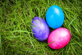 Easter eggs sunk deep into green grass Royalty Free Stock Photo