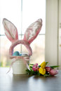 Easter eggs and tulips with ears of hare Stock Photography