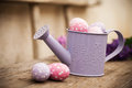 Easter eggs in watering can Royalty Free Stock Photo