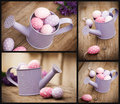 Easter eggs in watering can Stock Image