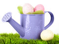 Easter eggs in watering can on grass Stock Image