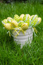 Easter eggs in white pail on grass the a fresh green Royalty Free Stock Images