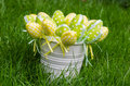 Easter eggs in white pail on grass the a fresh green Stock Photography