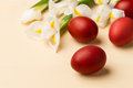 Easter eggs in the whitish nest and white flowers on beige table Stock Photos