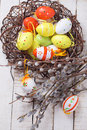 Easter eggs and willow branches on wooden background for design selective focus Stock Photography