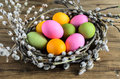 Easter eggs in willow nest, flowers over wooden rustic background