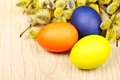 Easter eggs on a wooden surface fence with brunch of goat willow tree Stock Photography
