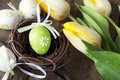 Easter eggs with yellow tulip flowers Royalty Free Stock Images