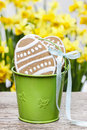 Easter gingerbread cookies in green bucket Royalty Free Stock Photos