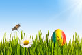 Easter grass with egg daisy and bee Royalty Free Stock Images
