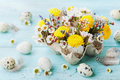 Easter greeting card with colorful flowers, feather and quail eggs on vintage turquoise table. Beautiful spring composition. Royalty Free Stock Photo