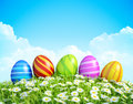 Easter greeting card decorated easter eggs grass flowers background ornate easter eggs meadow Royalty Free Stock Photography