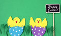 Easter hand made greeting card: hatched chicken in eggshell with blackboard isolated on green background