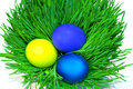 Easter holiday, color eggs Royalty Free Stock Photography