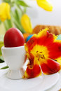 Easter holiday still life passover eggs flowers and cake Stock Image