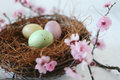 Easter Holiday Themed Still Life Scene in Natural Light Royalty Free Stock Photo