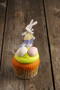 Easter homemade cupcake Royalty Free Stock Photo