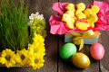 Easter homemade gingerbread cookie and eggs Royalty Free Stock Photography