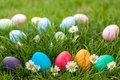 Easter hunt different color egg on a grass Royalty Free Stock Photo