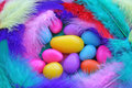 Easter Jelly Beans in Feathers Stock Photo