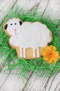 Easter lamb cookie Royalty Free Stock Photo