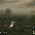 Easter meadow background in setting Royalty Free Stock Photo