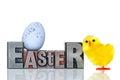 Pasqua e pulcino