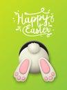 Easter motive, bunny bottom on green background, illustration