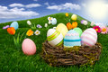 Easter nest Stock Images