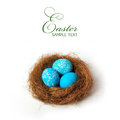 Easter nest isolated over white background Royalty Free Stock Photos