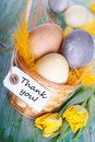Easter nest with thank you eggs and label Royalty Free Stock Images