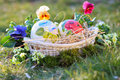 Easter painted eggs among flowers ostrich and grass and spring celebration Royalty Free Stock Image