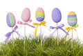 Easter pastel colored eggs Stock Images