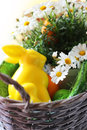 Easter photo of basket with daisy flowers and bunny Stock Photography