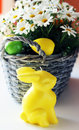 Easter photo of basket with daisy flowers and bunny Royalty Free Stock Photography