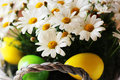 Easter photo of basket with daisy flowers and eggs Royalty Free Stock Images