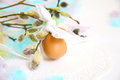 Easter place setting background eggs willow Stock Photo