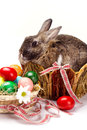 Easter rabbit furry brown with little white spot bunny in straw nest many colorful eggs and camomile in basket with bows on white Stock Photo