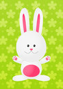 Easter rabbit on green background Stock Image
