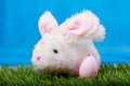 Easter rabbit green grass Royalty Free Stock Images