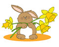 Easter rabbit hand drawn picture of a holding daffodils illustrated in a loose style vector eps available Royalty Free Stock Image
