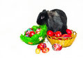 Easter rabbit and two baskets with Easter eggs Royalty Free Stock Photo