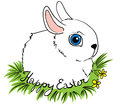 Easter rabbit white on the green grass Stock Photo