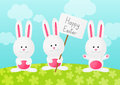 Easter rabbits on spring background meadow Royalty Free Stock Image