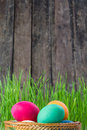 Easter rustic background with eggs and grass Royalty Free Stock Photos