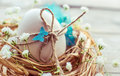 Easter rustic card egg in nest vintage background toned Royalty Free Stock Photography