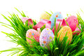 Easter scene. Colorful eggs in spring grass Royalty Free Stock Photo